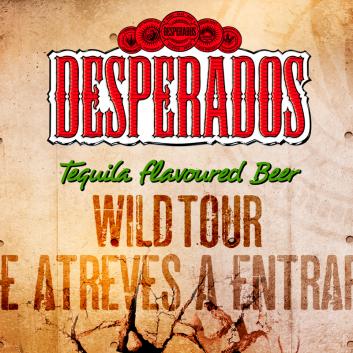 wild-tour-2013-portada
